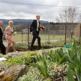 Příchod pro nevěstu